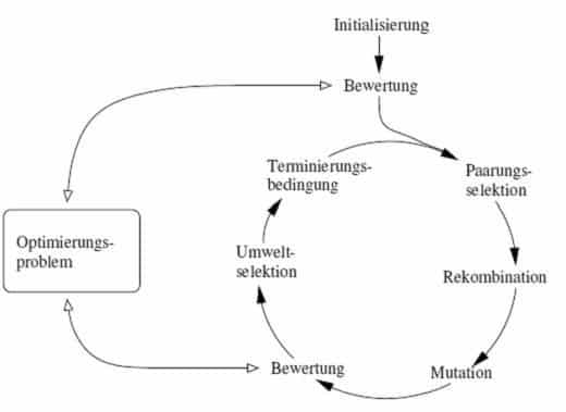 Graphische Darstellung des Auswahlmechanismus, der zur evolutionären Weiterentwicklung eines Lösungsansatzes führt
