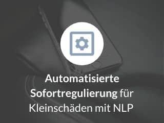 Automatisierte Sofortregulierung für Kleinschäden mit NLP 