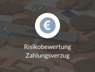 Risikobewertung Zahlungsverzug
